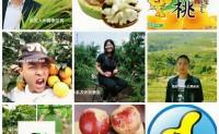 【宝贝儿代言 绿色农特产品健康行】助农联盟 农特优品推荐(第二期)