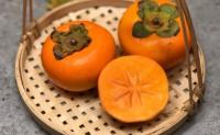 【烟台富有·甜脆柿:较硬的甜柿子】坚守品控,以树上脱涩、入口脆甜征服了无数人的味蕾