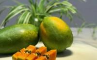 【泉州果优农产品】有机红心木瓜、枇杷蜜等 欢迎有实力的平台渠道合作共赢!