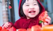 【丹东玖玖农场:草莓】自有农场1000亩 支持一件代发、落地配,欢迎各大平台对接