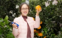 【四川丑柑不知火 春季必吃柑橘】将持续供货至4月中旬,欢迎各团队前来对接合作!