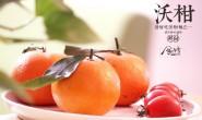 【食当季 广西沃柑/塔罗科血橙】发货能力稳定有加,欢迎对纯正鲜果感兴趣的朋友对接分享!