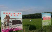 【东北特产:军垦口粮米】可为家庭、团队、企业直供优质口粮新米 欢迎各类渠道对接