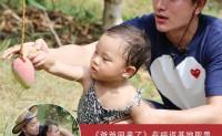 """【海南:福返芒果】博鳌亚洲论坛的供应基地,也是""""爸爸回来了""""拍摄基地。欢迎对接!"""
