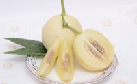 【益农帮 专注陕西应季水果】阎良甜瓜、陕西樱桃,每天大量发货,期待大家对接合作!