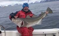 【挪威北极鳕鱼——挪威政府即将主推的、最正宗的鳕鱼】现面向机团、社群寻找合作渠道