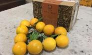 【橙为先:麻阳冰糖橙】寻求平台、代理、微商团队等渠道合作。支持一件代发