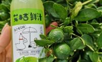 【艾桔鲜汁】海南青金桔特产饮品、生津止渴、富含维生、够鲜够爽!欢迎对接合作