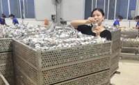【芝扎扎品牌海鸭蛋】产自广西北部湾红树林海鸭,诚邀各地商家一起发扬闲的蛋疼
