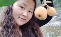 【花昇农业 雅安高山枇杷】石棉县特产,支持一件代发,陆运及空运落地配!