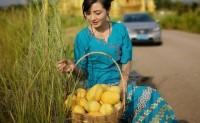 【缅甸圣德龙芒果】五月芒果控最值得拥有,支持一件代发,落地配,空配,欢迎对接