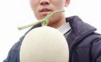 【瓜恋你®海阳网纹瓜】货品稳定,可提供一件代发,落地配,整车业务,欢迎对接!