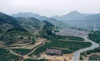 【阜平黑崖沟樱桃基地】这个樱桃园有160亩,在保定阜平县龙泉关镇的黑崖沟村