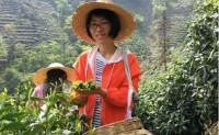 【黄山市新明乡丁小鹿绿茶合作社】坚持纯手工制茶,深受茶友们喜爱,欢迎对接