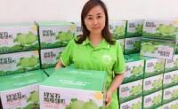 """【喝牛奶长大的""""绿宝石甜瓜""""】糖测17,生态种植,每天可出货10000斤,欢迎对接!"""