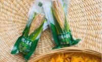 【云南:香糯小玉米】10年的预加工玉米经验,具备SC等各种资质。欢迎对接!
