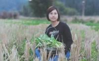 【梅一客】以直营农场时令蔬菜为主+客家农特产品为主,欢迎对接合作