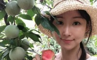 【湖北苹果李】成熟期20天左右,果肉鲜红香甜,可脆吃软吃,欢迎各大合作商试吃对接!