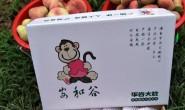 【北京平谷安和谷蟠桃】顺丰速递包邮,一件代发,量大可落地配,欢迎对接