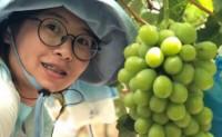 【云南香印青提·自然果】仅供线上,不支持落地配,7月8号首发,货不多卖完即止!