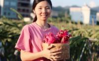 【狸狸鲜果 福建火龙果】目前仅有种植900亩,每批次产量仅40w斤,欢迎对接