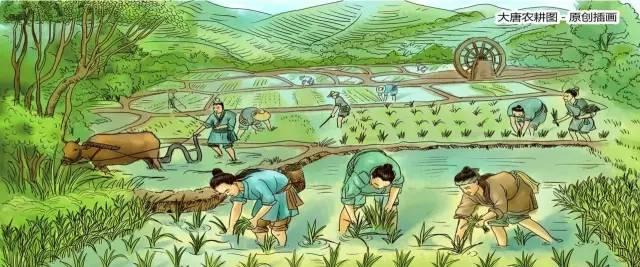 对话唐俊:农业,漫长而煎熬,要放弃么?