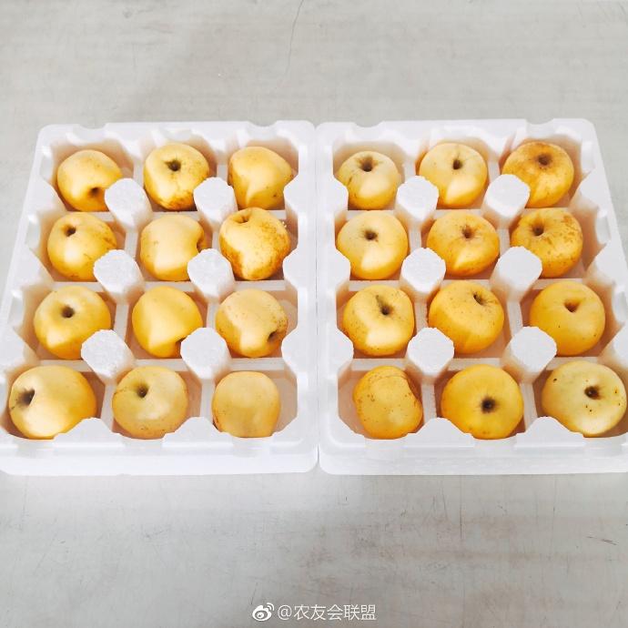 维纳斯黄金苹果