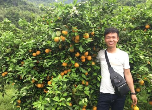 富硒清山橙