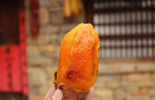 烟薯25源头供应商