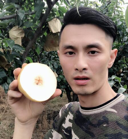 丹棱圆红丰水梨