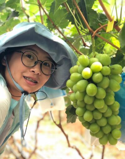 云南香印青提·自然果